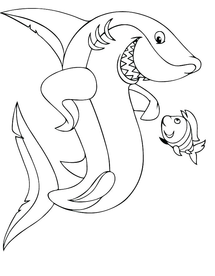 688x885 Shark Printable Coloring Pages Great White Shark Coloring Page