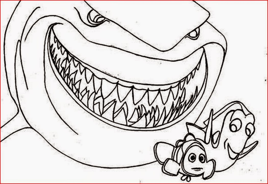 1051x721 Coloring Pages Sharks Beautiful Free Coloring Pages Of Tiger Shark