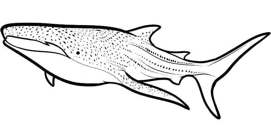 Shark Printables Coloring Pages