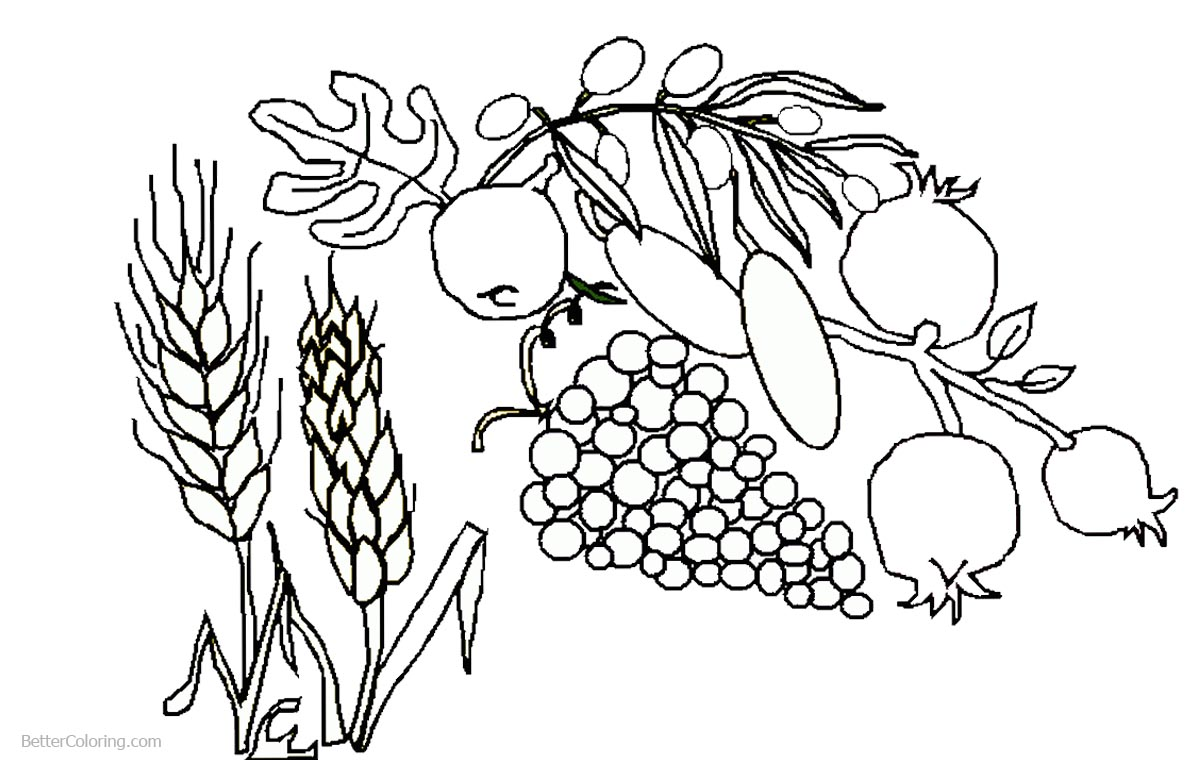1200x760 Foods Of Shavuot Coloring Pages
