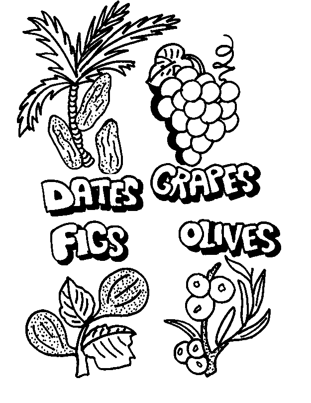 625x808 Shavuot Coloring Pages
