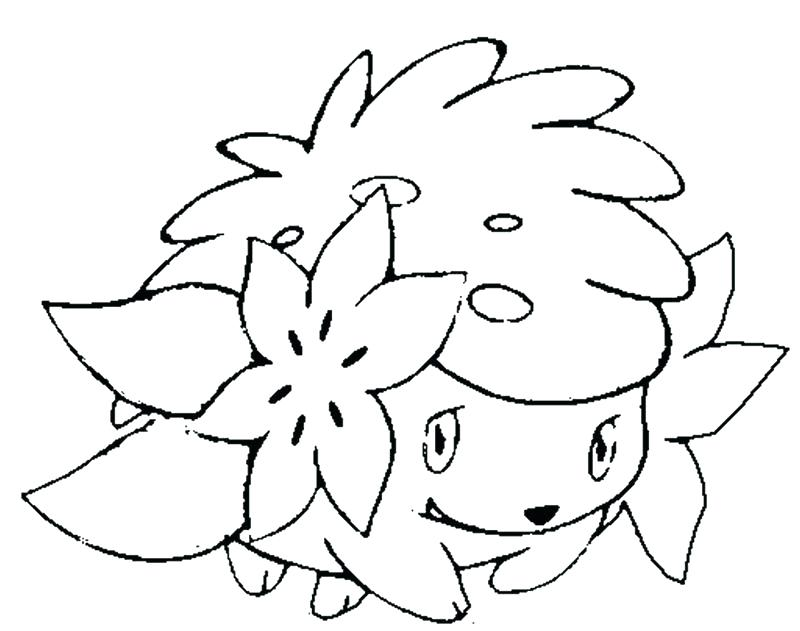 800x631 Shaymin Coloring Pages Coloring Pages Coloring Page Coloring Pages