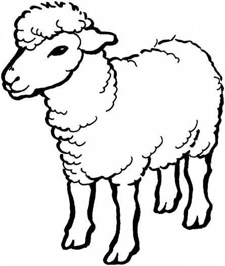 Sheep Coloring Pages Free At Getdrawings Com Free For Personal Use