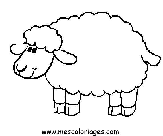 572x477 Page Sheep Coloring Sheet