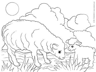 400x302 Sheep And Lamb