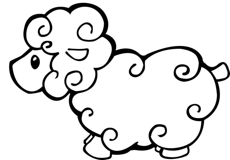 900x626 Sheep Coloring Pages For Kids Printable