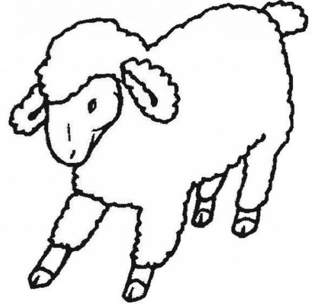 1024x997 Butterfly Sheep Coloring Page Cartoon Free Printable Pages Animals