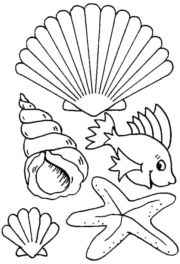 600x879 Sea Creatures Coloring Pages Sea Shell Coloring Page Different