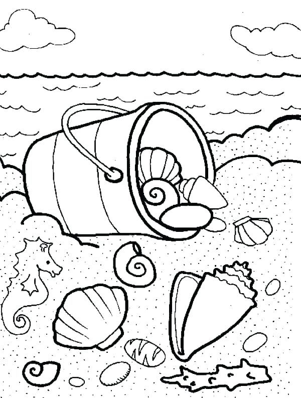 600x793 Sea Shell Coloring Page Seashell Pictures To Color Sea Shell