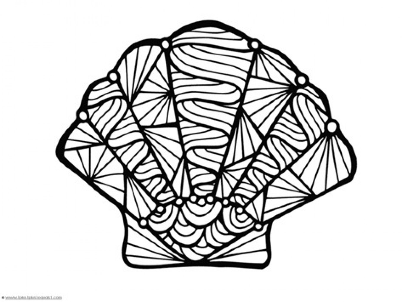 1359x1020 Sea Shell Coloring Pages