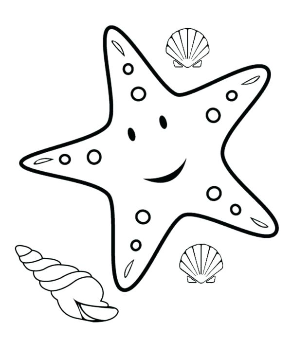 600x699 Sea Shell Coloring Pages Sea Shells Coloring Pages Sea Shell