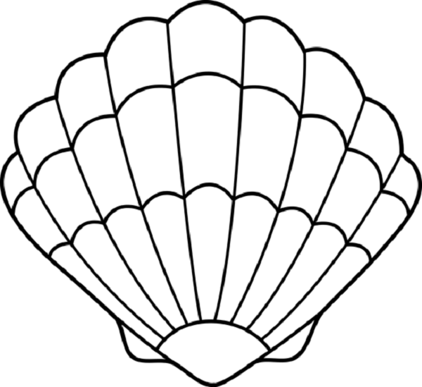 600x549 Clam Shell Coloring Pages Coloring Kids Cameron Turns