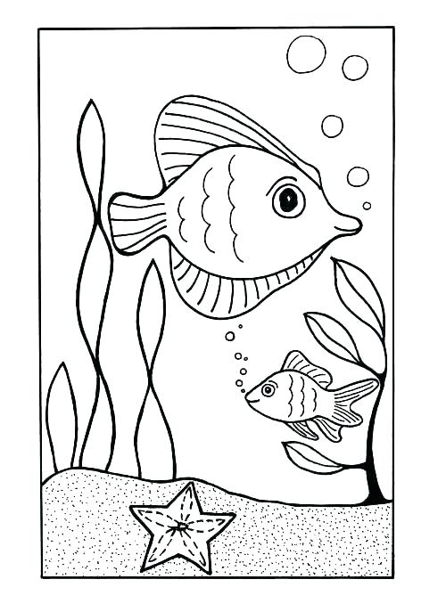 500x687 Coloring Pages Sea Shells