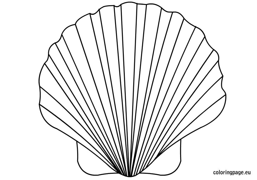 822x575 Shell Coloring Pages Shell Coloring Page Ideas