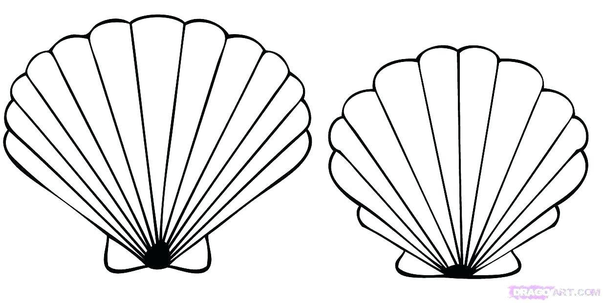 1234x621 Coloring Pages Sea Shells Coloring Pages Of Seashells Coloring
