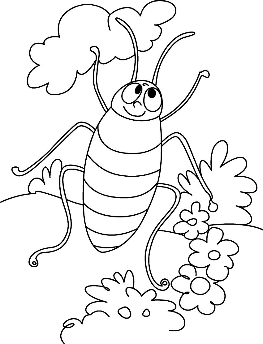 850x1112 Free Printable Cockroach Coloring Pages For Kids