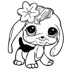 230x230 Littlest Pet Shop Coloring Pages For Kids