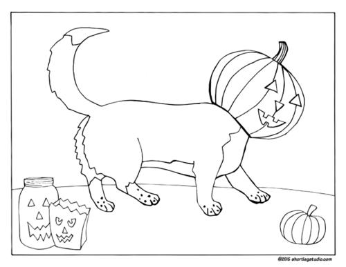 500x387 Corgi Pumpkin Head Coloring Page! Drawingcoloring Pages