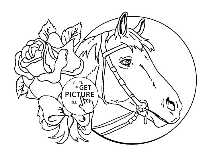 736x551 Horse Coloring Pages Free Detailed Horse Coloring Pages Free