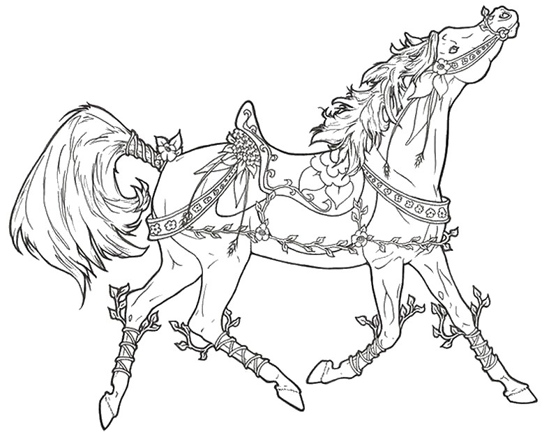 800x620 Adult Coloring Pages Horses