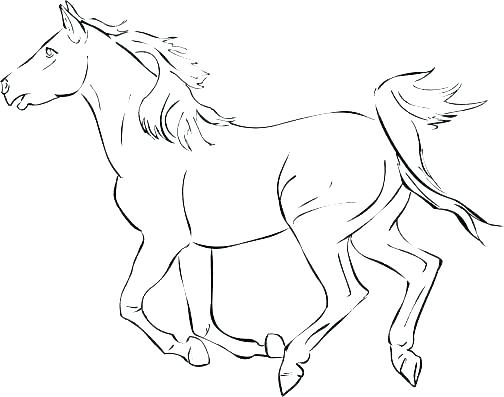 504x397 Horse Jumping Coloring Pages