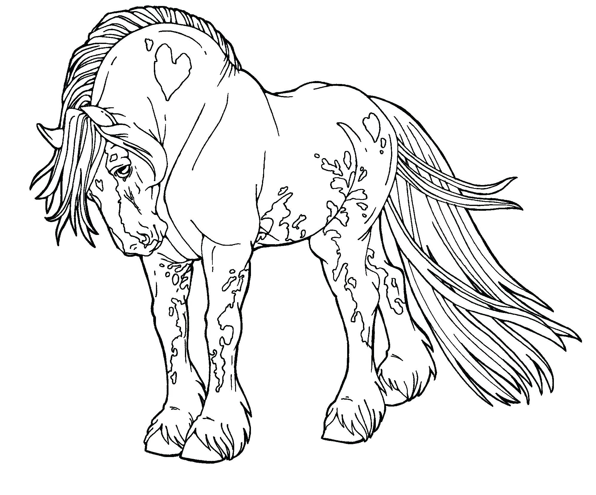 1995x1656 Beautiful Horse Printing Coloring Pages Fashio