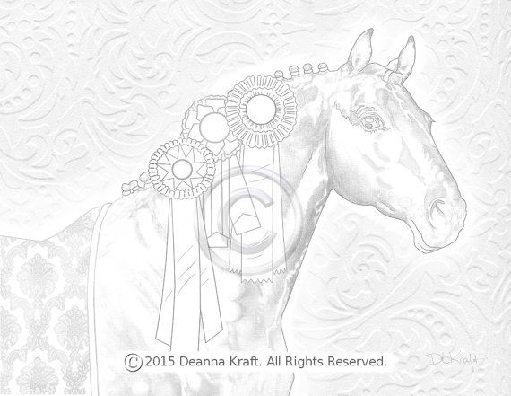 570x441 Bling, Horse, Coloring Page, Show Horse, Warmblood, Blue Ribbon