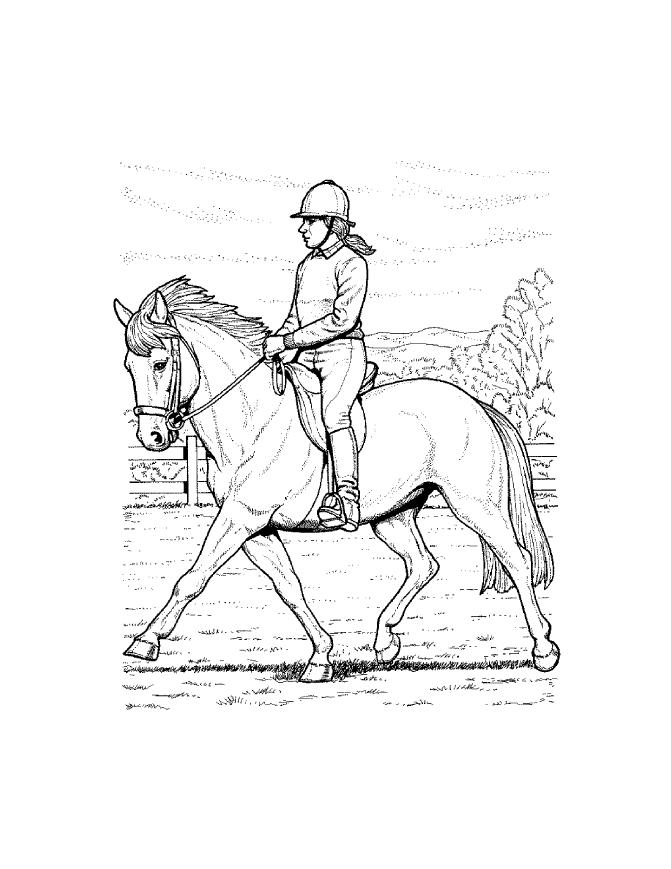 671x869 Horse Coloring Sheets For Kids