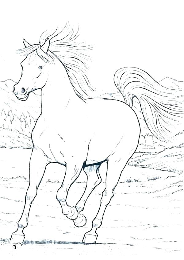 600x847 Horse Jumping Coloring Pages Free Carousel Animals Coloring Pages