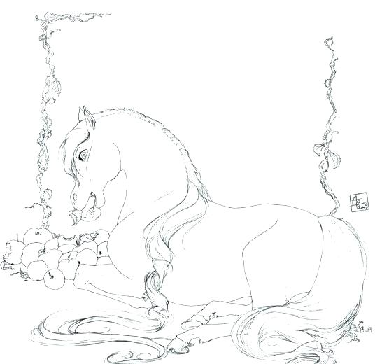 536x520 Horse Jumping Coloring Pages Horse Coloring Games Tags Free Online