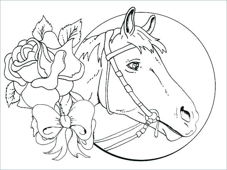 736x551 Horse Jumping Coloring Pages Show Jumping Horse Coloring Pages