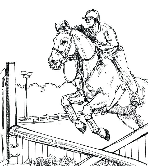 560x627 Horse Jumping Coloring Pages Show Jumping More Coloring Pages