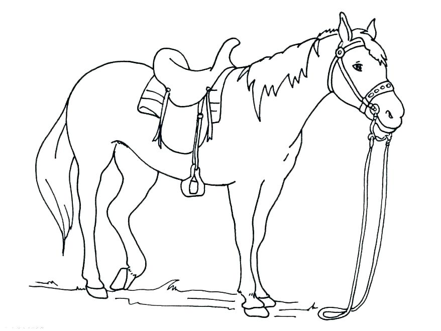878x659 Horse Jumping Coloring Pages