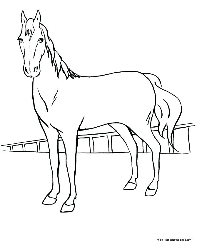 670x820 Free Horse Coloring Pages Show Jumping Horse Colouring Pages