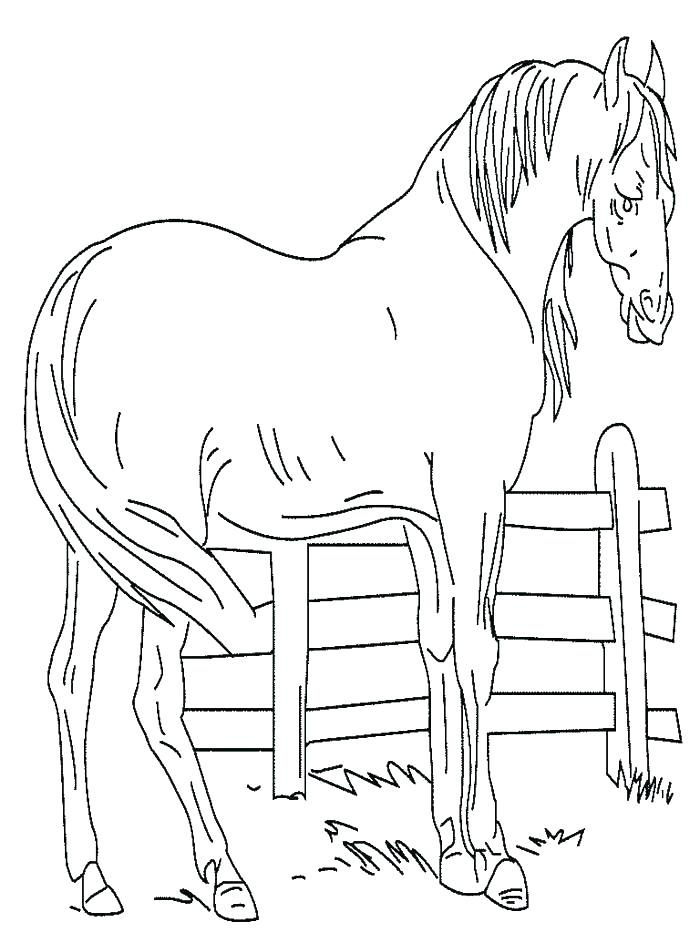 700x933 Horse Jumping Coloring Pages Coloring Pages Animals Cute Horse