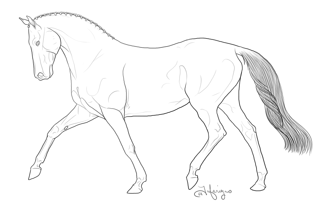 1108x704 Breyer Horse Coloring Pages