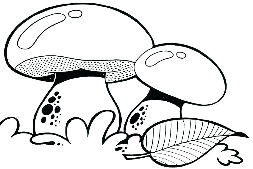 850x567 Trippy Mushroom Coloring Pages Mushroom Coloring Pages Full Size