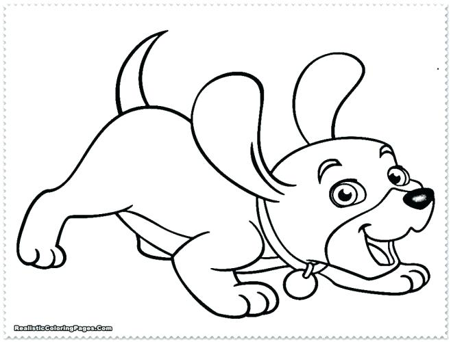 658x500 Husky Coloring Pages Husky Coloring Page Siberian Husky Colouring