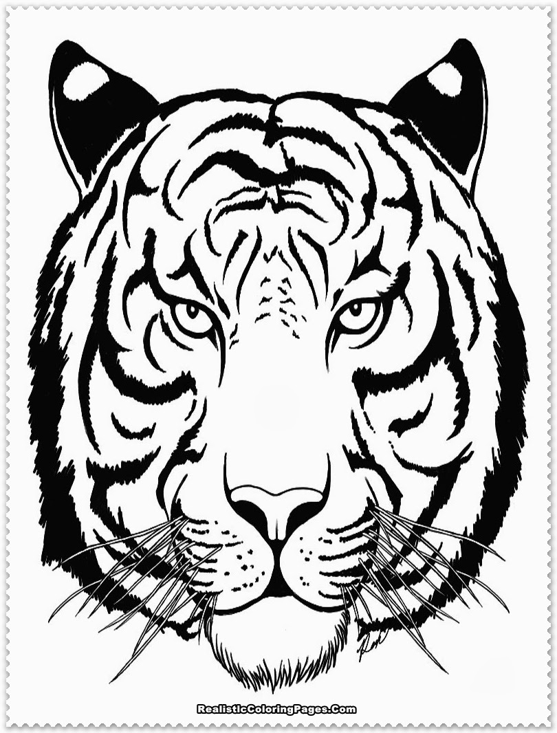 Siberian Tiger Coloring Page