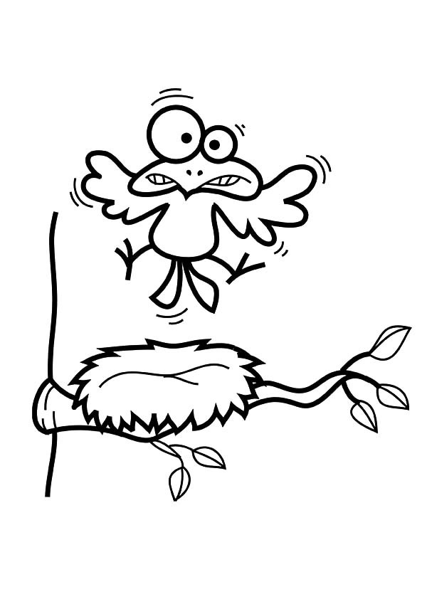 600x849 Bird Silly Face Over His Bird Nest Coloring Pages Best Place