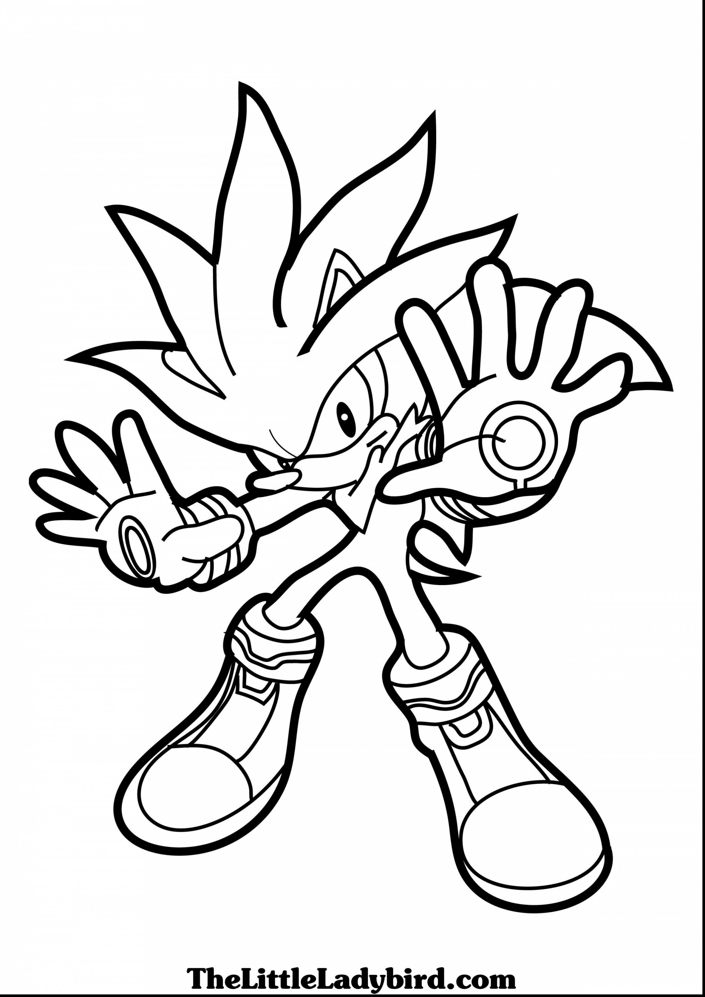 2728x3858 Unlimited Silver The Hedgehog Coloring Pages S
