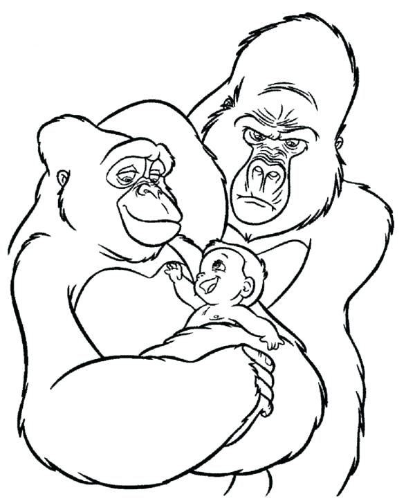 600x727 Gorilla Coloring Page Coloring Page The Gorilla The Gorilla