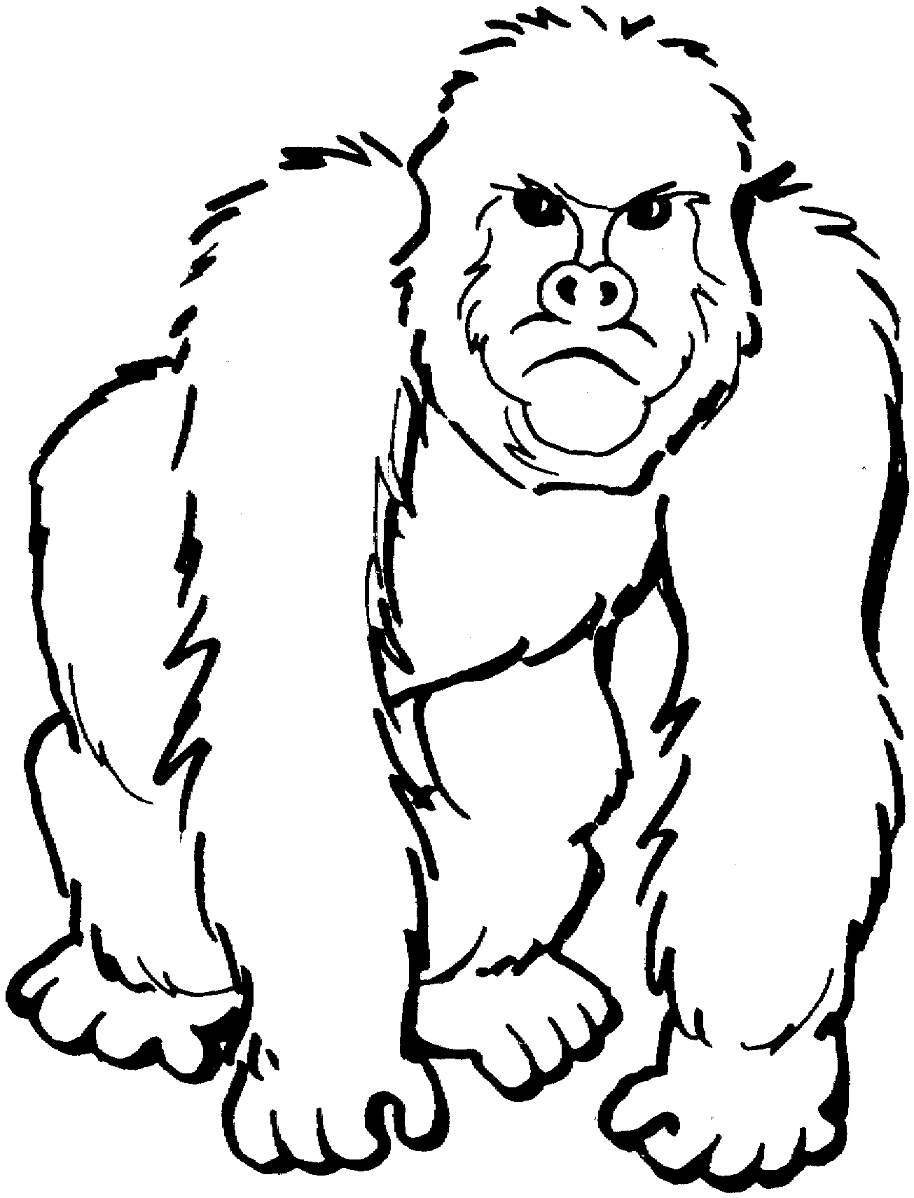 1305x1710 Gorilla Coloring Pages Awesome Free Gorilla Coloring Pages Logo