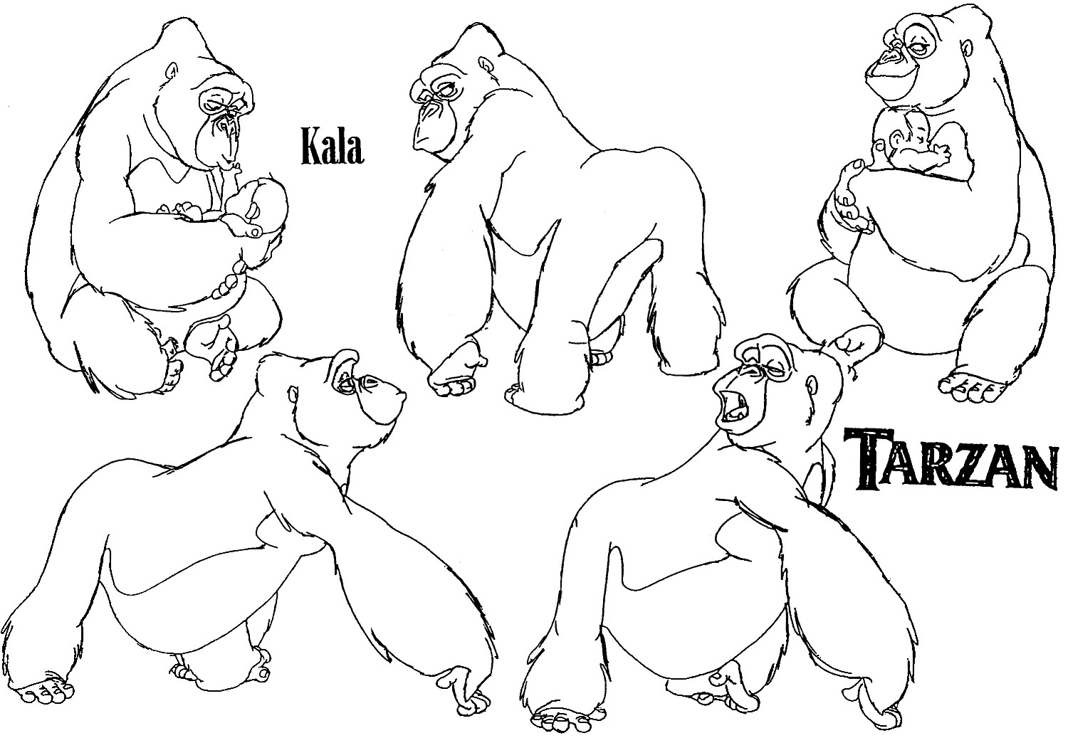 1500x1037 Awesome Silverback Gorilla Coloring Pages Photos