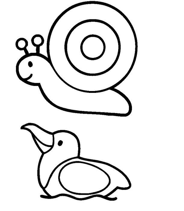 612x700 Easy Animal Coloring Page