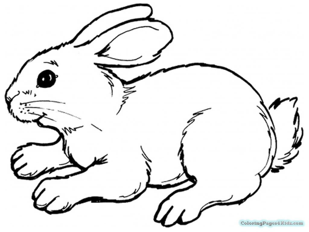 1024x768 Bunny Coloring Pages Simple Coloring Pages For Kids