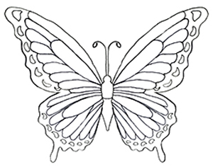 300x236 Remarkable Coloring Pictures Of Butterflies Colouring For Amusing