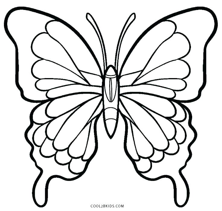 736x700 Simple Butterfly Coloring Pages Color Page Butterfly Simple
