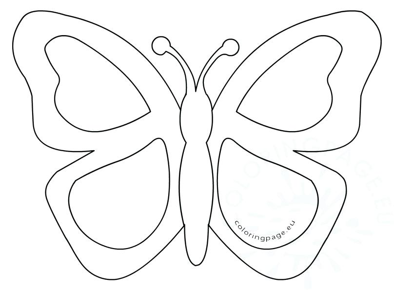 808x595 Simple Butterfly Coloring Pages Simple Butterfly Stained Glass