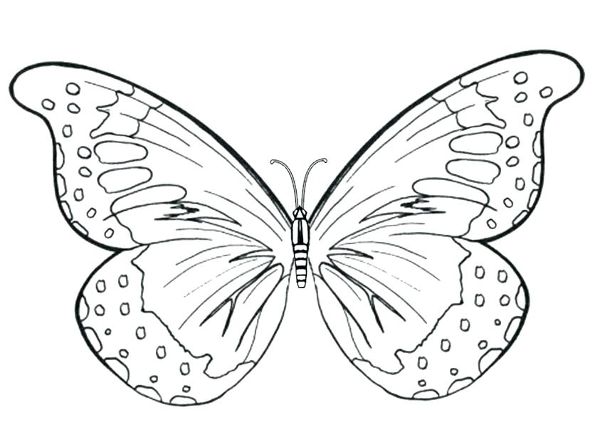 850x600 Simple Butterfly Coloring Pages
